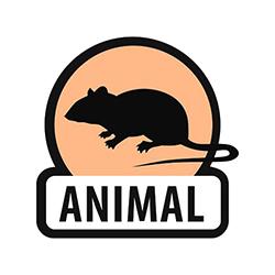 Pesagem de animais